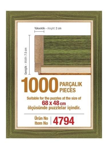 Educa Heidi 1000 Parçalık Puzzle Çerçevesi 48 X 68 Cm 4794 Renkli